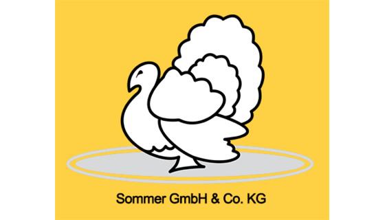 Sommer GmbH & Co. KG
