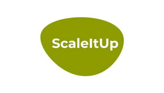 ScaleItUp - Digitalisierung&Fördermittel